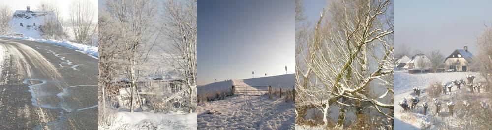 Winter 2012 in de Ooijpolder foto's van Ann Hoogendoorn - beeldend kunstenaar