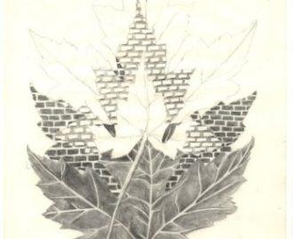 bladerentekening van Ann Hoogendoorn