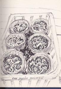 Tuinschets van de tuinvrouw Ann Hoogendoorn